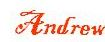 andrew signature for blog